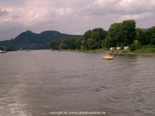 rheinschwimmen-030