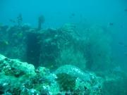 malediven-2013-027