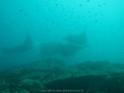 malediven-2013-044
