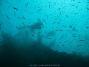 malediven-2013-052