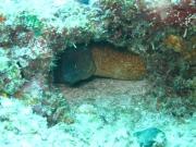 malediven-2013-072