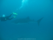 malediven-2013-103