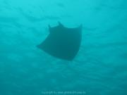 malediven-2013-116