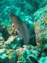 malediven-2013-123