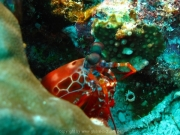 malediven-2013-167
