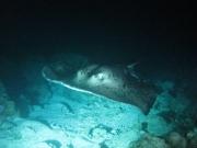 malediven-2013-216