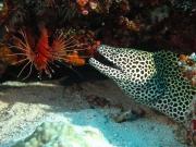 malediven-2013-225