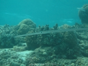 malediven-2013-268