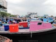 malediven-2013-281