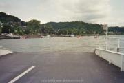 rheinschwimmen-bad-honnef-28