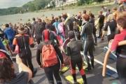 rheinschwimmen-bad-honnef-30