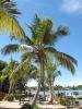 saona-island-05