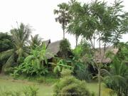Khao Lak und Phuket - 101