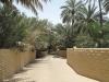 Abu Dhabi - Al Ain City - 14
