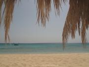 Hurghada 2015 - 141