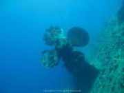 Soma Bay - 156