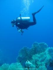 Soma Bay - 263