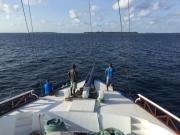 Malediven Tauchsafari 09-2017 - 043