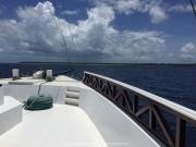 Malediven Tauchsafari 09-2017 - 083