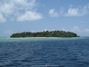 Malediven Tauchsafari 09-2017 - 107