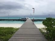 Malediven Tauchsafari 09-2017 - 180