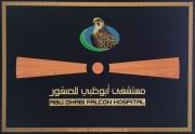 Abu Dhabi 2016 - 133