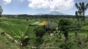 Bali-169