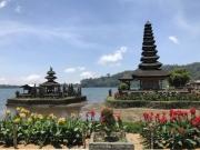 Bali-208