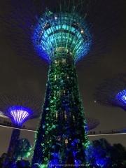 Singapore - 151