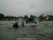 rheinschwimmen-27