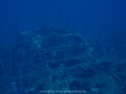 curacao-dive-074