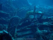 curacao-dive-075