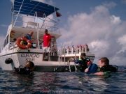 curacao-dive-104