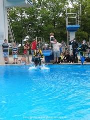 splash-043