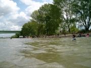 rheinschwimmen-66