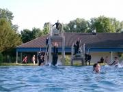 rheinschwimmen-090