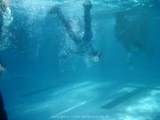 rheinschwimmen-092