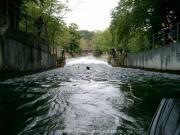 isarschwimmen-29