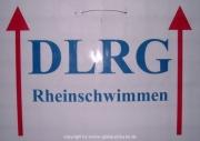 rheinschwimmen-020