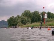 rheinschwimmen-073