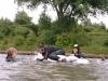 rheinschwimmen-072