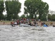 rheinschwimmen-39