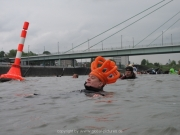 rheinschwimmen-57
