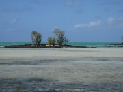 land-leute-strand-109