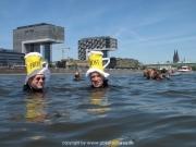 rheinschwimmen-43
