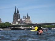 rheinschwimmen-44