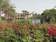 emirates-palace-055