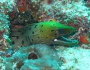 malediven-2013-017