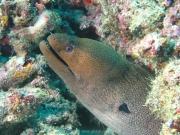 malediven-2013-019