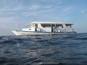 malediven-2013-024